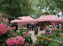 Wochenmarkt-Hermannplatz